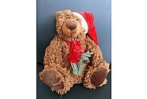 Medvěd s čepičkou